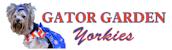 Gator Garden Yorkies - Gainesville, Florida